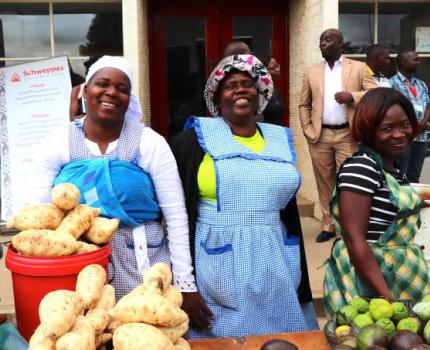European Union funding to boost the informal sector in Zimbabwe