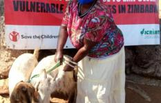 SUPER-EVC project beneficiary receives two goats